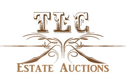 auction-logo